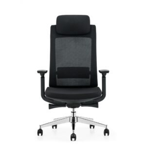 Enzy-Mesh-Ergonomic-Chair-1