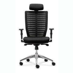 Leo Ergonomic Chair