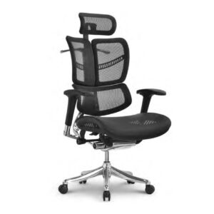 butterfly ergonomic chair helps you increase productivity